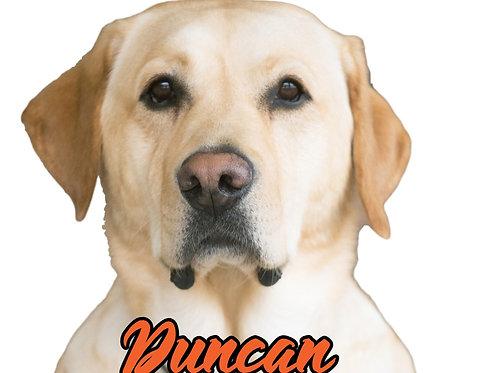 Duncan Sticker