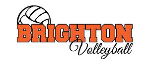 volleyball logo.jpg