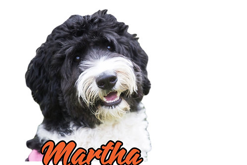 Martha Sticker