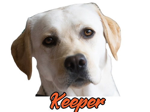 Keeper Sticker