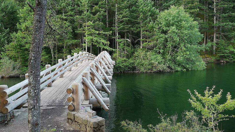 Cascade Bridge.webp