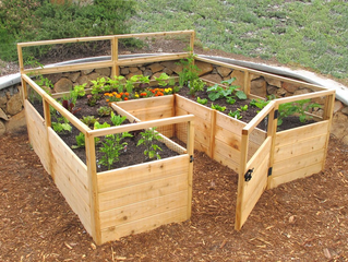 Creating a #RaisedBed