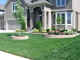 Easy #frontYard #landscaping