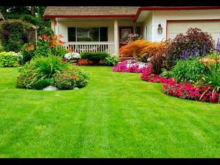 Landscaping Ideas                    #landscaping #landscapingDesign