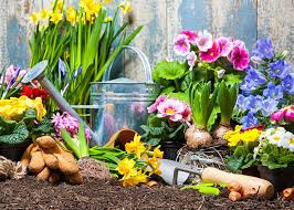 #Gardening Facts