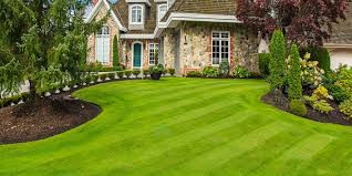 #Lawn Care Tips And Proper Lawn Maintenance