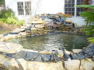Cheap Pond Liners