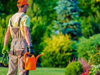 Finding the Right #LandscapingCompany #lawnCare #landscaping