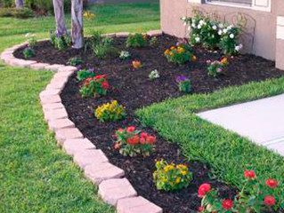 Cheap Landscaping Ideas           #gardening #landscaping #mulching #mulch #stop weeds