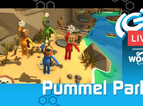 The(G)net LIVE: Pummel Party