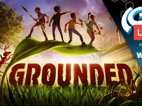 The(G)net LIVE: Grounded