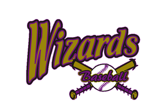 wizards_baseball_logl.png