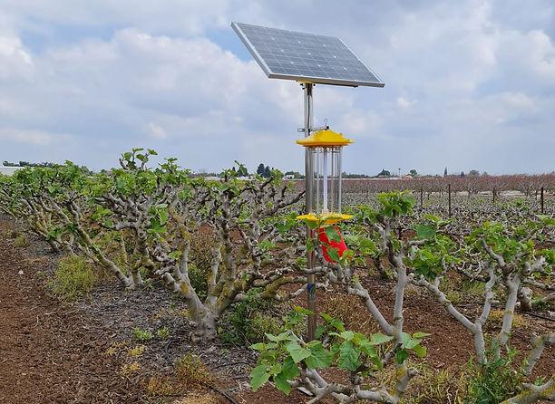 SPKS - Solar Pets Killing System (1).jpg