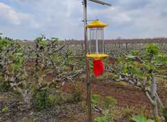 SPKS - Solar Pets Killing System