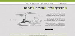רון יכיני - יעוץ עסקי - Fly Guy - Fly Gu