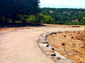 טיול בישראל מדריך טיולים מסלול נגיש.jpeg
