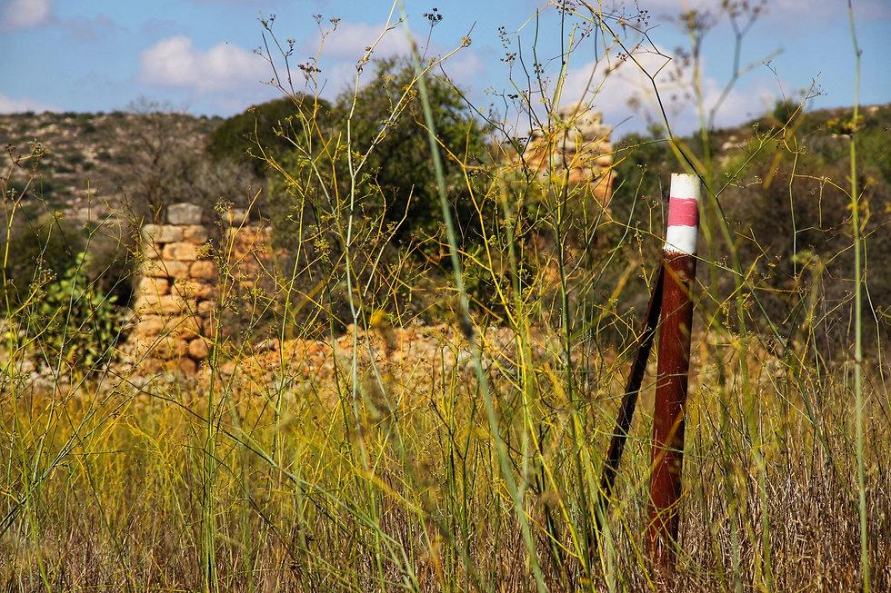 טיול בישראל מדריך טיולים טיול מקומות פחו