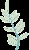 plante-bleu.png