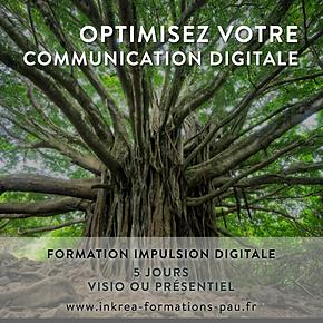 Post-Formation-Impulsion-Digitale.png