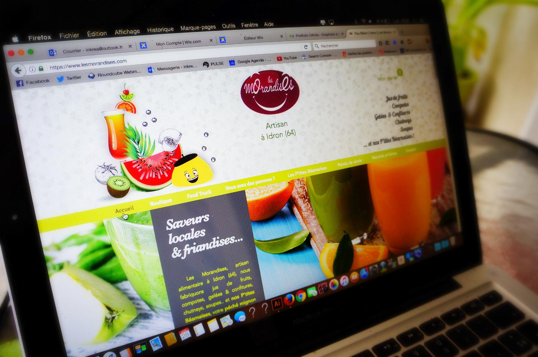 CREATION SITE WEB PAU GRAPHISTE
