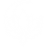 Icone-Thaï-Yoga-Massage_blanc_web-sans-fond.png
