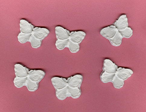 Small Butterfly plaster of Paris painting project.