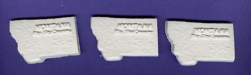 Montana state plaster of Paris painting project.