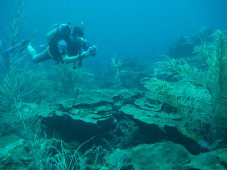 Boka Patrick April 2009 (5).JPG