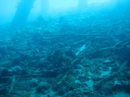 Destroyed reef COT 2009.JPG