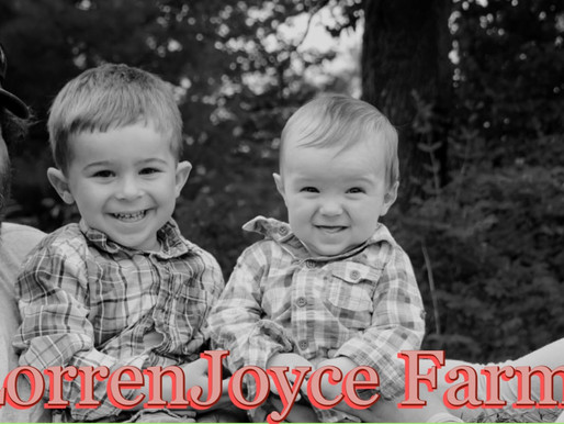Vendor Highlight! LorrenJoyce Farm