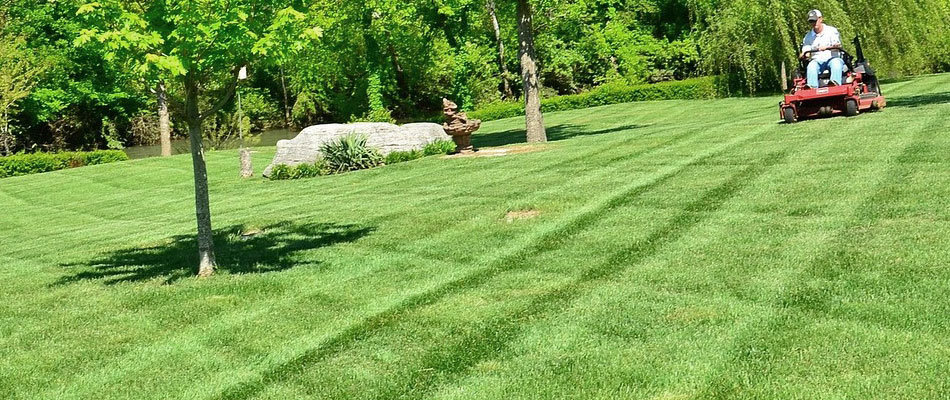 content-mowing-lawn.jpg