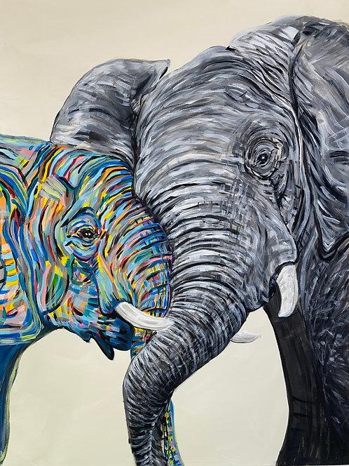"""""""Elephants"""""""