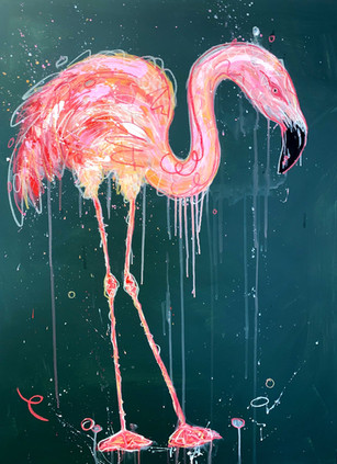 """Flamingo in the Rain"""