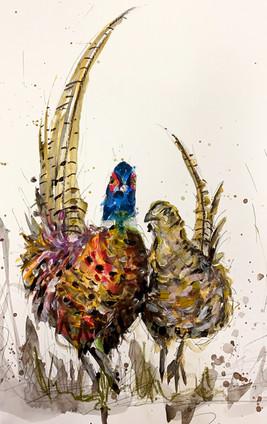"""Pheasants"""