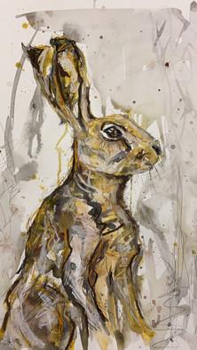 """""""Hare"""""""