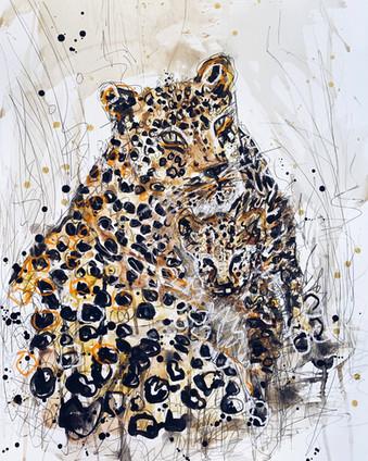 """""""Leopards"""""""