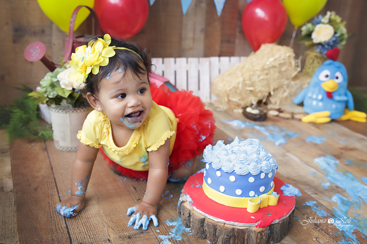 Amanda's Cake Smash {Children photographer in Broward county, FL}