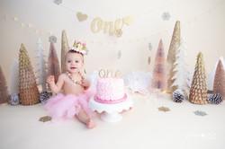 cake smash photography broward county