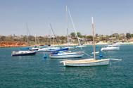 Mornington Sailing Boats