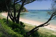 Perfectly still at Sullivan Bay, Sorrento