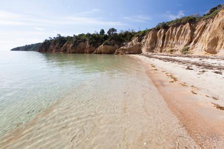 Tassells Cove, Safety Beach