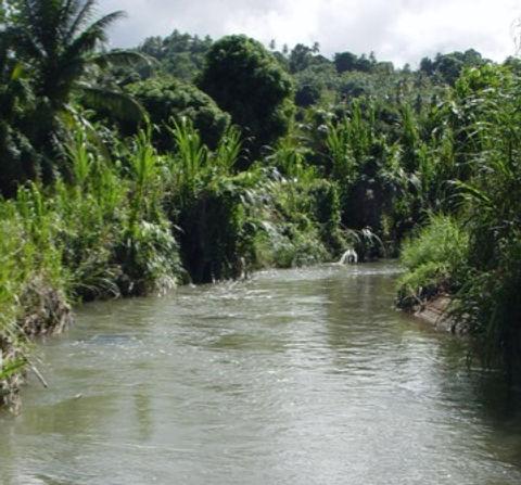 Watercourse.jpg