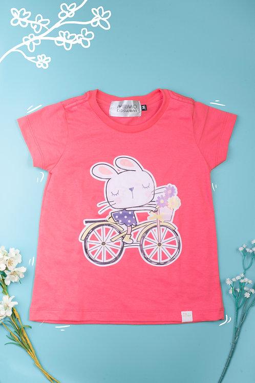 Rabbit & bicycle