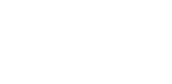 Aline-Salvi-logotipo-branco.png
