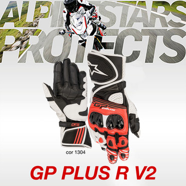Luva GP Plus R V2