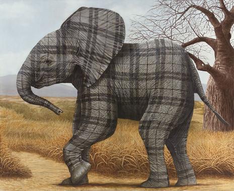 Tartan Elephant