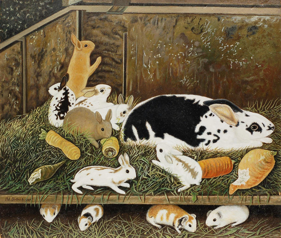 Four Guinea Pigs, Eight Rabbits, and Carrots