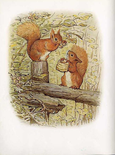 Red Squirrel Reel