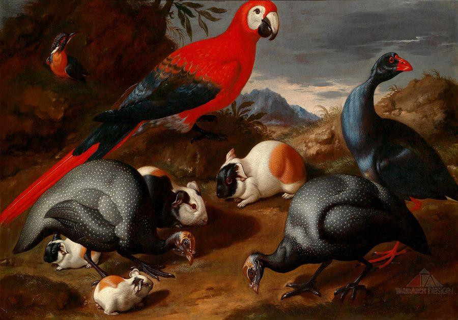 Still life with a parrot, guinea fowl, and guinea pigs