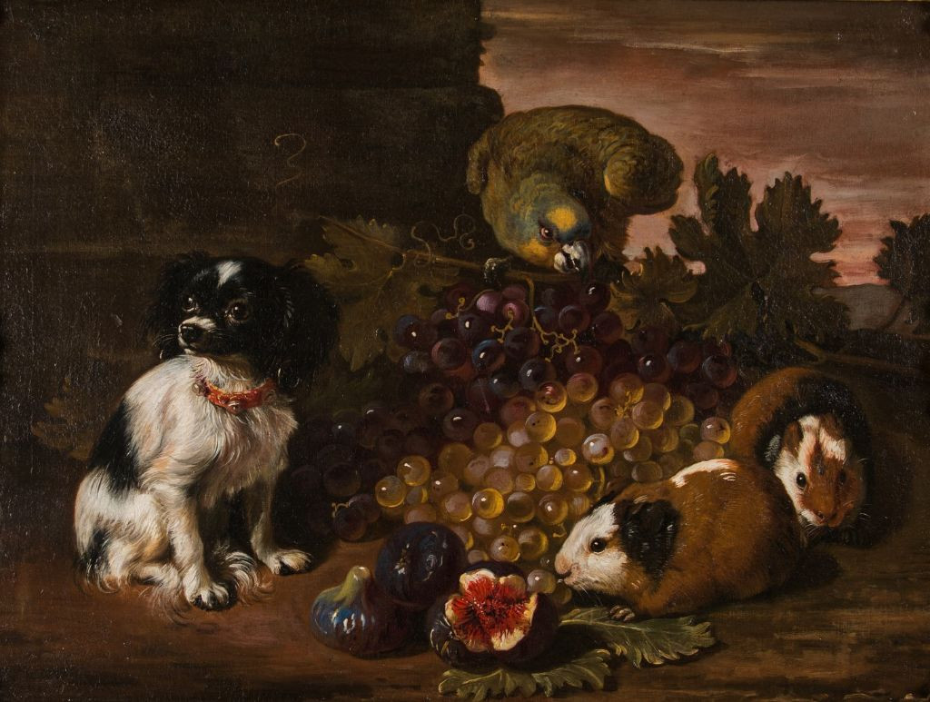 A Miniature Spaniel, Parrot, Guinea Pigs and Fruit,